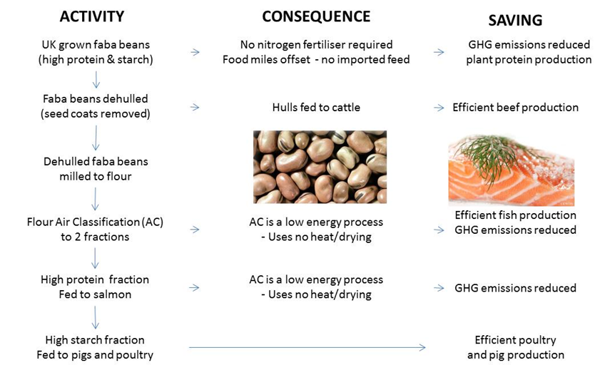 A flow-diagram summary of the beans4feeds project and air classification (AC)